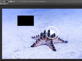 教程03章:Photoshop文件保存【37分钟】