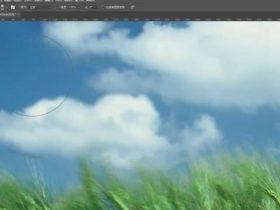教程32章:Photoshop模糊及减淡工具【19分钟】