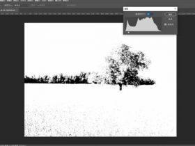 教程34章:Photoshop色调分离及可选颜色调色【50分钟】