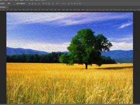 教程35章:Photoshop风格化及模糊扭曲滤镜【45分钟】