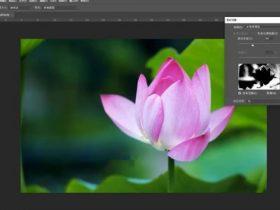 教程09章:Photoshop色彩范围及变换选区【44分钟】