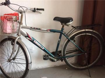 阿米尼自行车