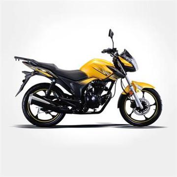 隆鑫摩托车